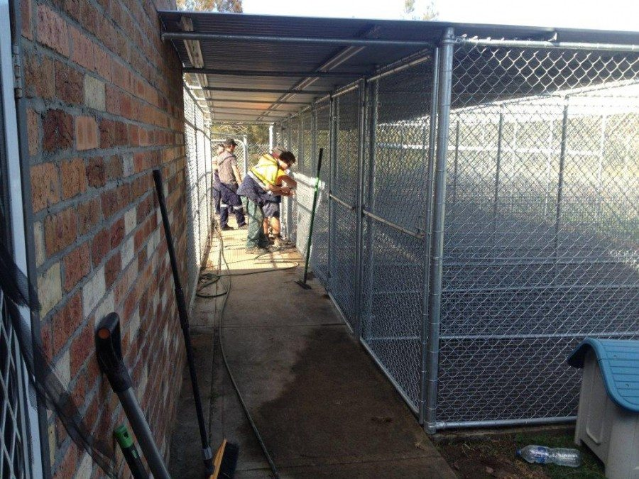 Large Dog Kennel or Small Dog Runs
