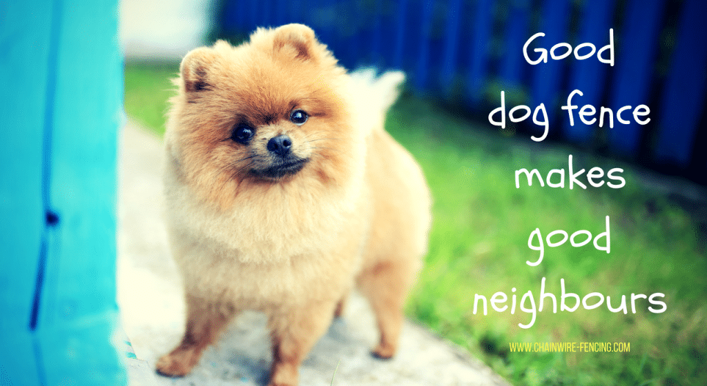 Good dog fence makes good neighbours - Chainwire Fencing Newcastle