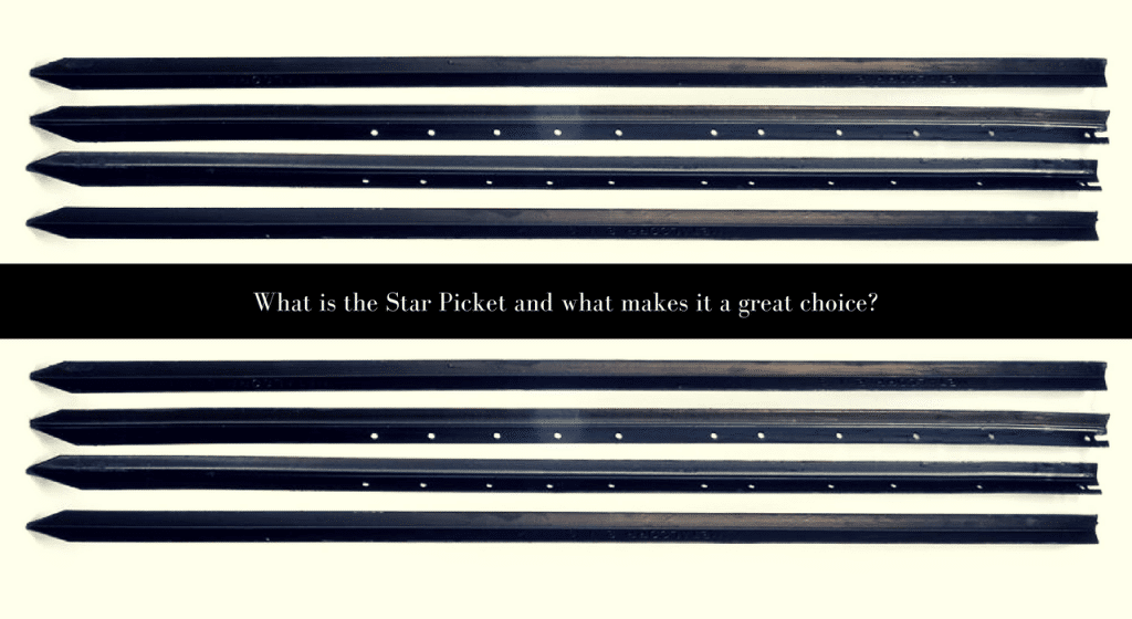 star picket fencing specialist