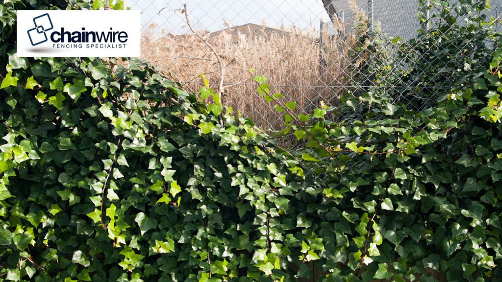 chainwire fencing specialist newcastle