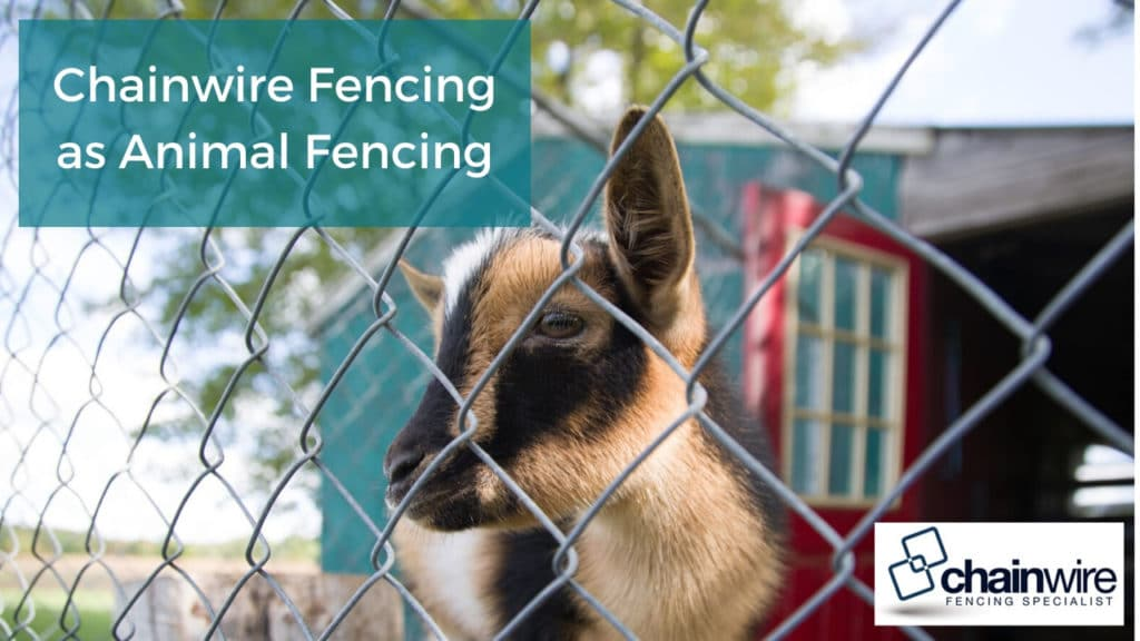 Chainwire fencing as animal fencing